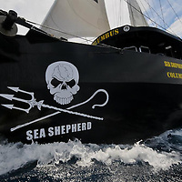 SEA SHEPHERD COLUMBUS ATLANTIQUE