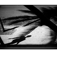"""Autor de la Obra: Aaron Sosa<br /> Título: """"Serie: Walker Havana / Caminante Habana""""<br /> Lugar: La Habana - Cuba<br /> Año de Creación: 2007<br /> Técnica: Captura digital en RAW impresa en papel 100% algodón Ilford Galeríe Prestige Silk 310gsm<br /> Medidas de la fotografía: 33,3 x 22,3 cms<br /> Medidas del soporte: 45 x 35 cms<br /> Observaciones: Cada obra esta debidamente firmada e identificada con """"grafito – material libre de acidez"""" en la parte posterior. Tanto en la fotografía como en el soporte. La fotografía se fijó al cartón con esquineros libres de ácido para así evitar usar algún pegamento contaminante.<br /> <br /> Precio: Consultar<br /> Envios a nivel nacional  e internacional."""