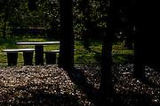 Uberlandia_MG, Brasil...Parque do Sabia em Uberlandia, Minas Gerais...The Sabia Park in Uberlandia, Minas Gerais...Foto: BRUNO MAGALHAES / NITRO