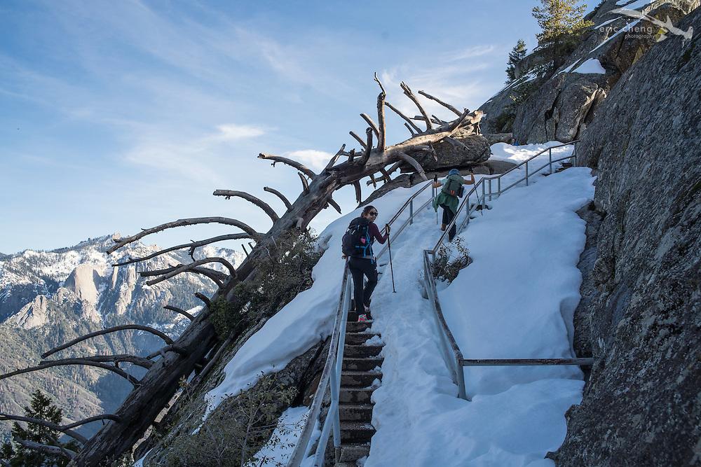 Nana Trongratanawong climbs up Moro Rock. Sequoia National Park, California.