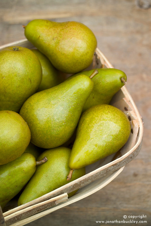 Pear 'Conference' in a basket - Pyrus