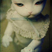Close up of a doll with a cats face holding a small heart in her paw