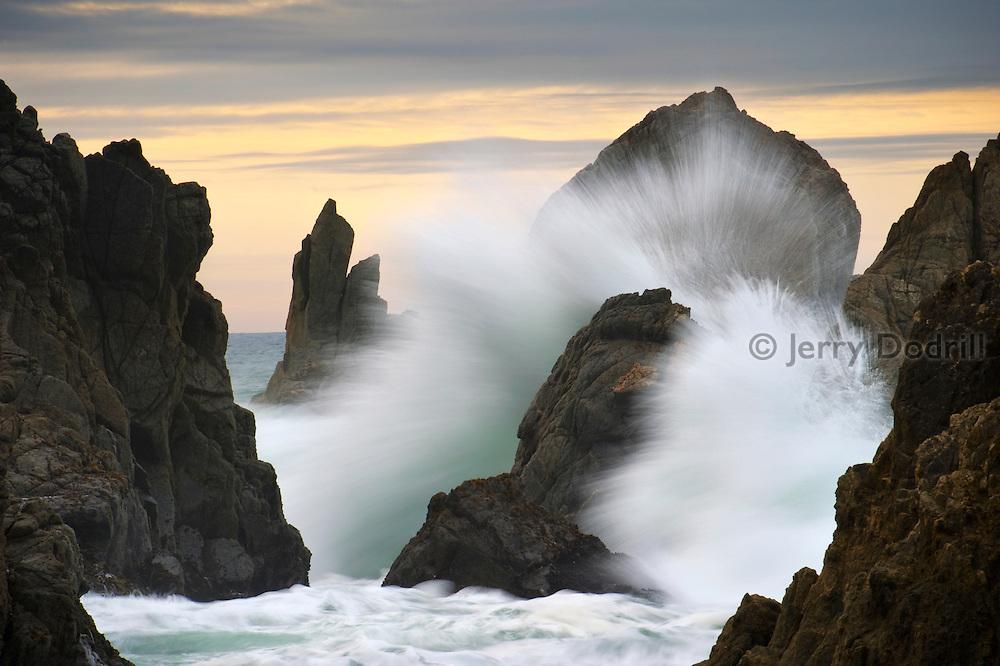 Sea stacks and crashing wave at Bodega Head on Northern California's Sonoma Coast