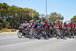 Tayler Wiles (USA) and Carolina Rodriguez Gutierrez (MEX) lead the bunch at Deakin University Elite Women Cadel Evans Road Race 2019, a 113 km road race starting and finishing in Geelong, Australia on January 26, 2019. Photo by Sean Robinson/velofocus.com