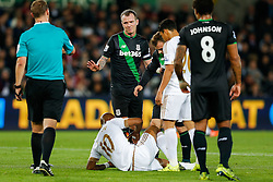 Charlie Adam of Stoke City pleads his innocence to referee Robert Madley after a challenge on Andre Ayew of Swansea City - Mandatory byline: Rogan Thomson/JMP - 07966 386802 - 19/10/2015 - FOOTBALL - Liberty Stadium - Swansea, Wales - Swansea City v Stoke City - Barclays Premier League.