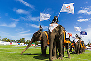 "28 AUGUST 2013 - HUA HIN, PRACHUAP KHIRI KHAN, THAILAND:  Elephants and their mahouts line up at the opening of the King's Cup Elephant Polo Tournament in Hua Hin, Thailand. The tournament's primary sponsor in Anantara Resorts and the tournament is hosted by Anantara Hua Hin. This is the 12th year for the King's Cup Elephant Polo Tournament. The sport of elephant polo started in Nepal in 1982. Proceeds from the King's Cup tournament goes to help rehabilitate elephants rescued from abuse. Each team has three players and three elephants. Matches take place on a pitch (field) 80 meters by 48 meters using standard polo balls. The game is divided into two 7 minute ""chukkas"" or halves. There are 16 teams in this year's tournament, including one team of transgendered ""ladyboys.""    PHOTO BY JACK KURTZ"