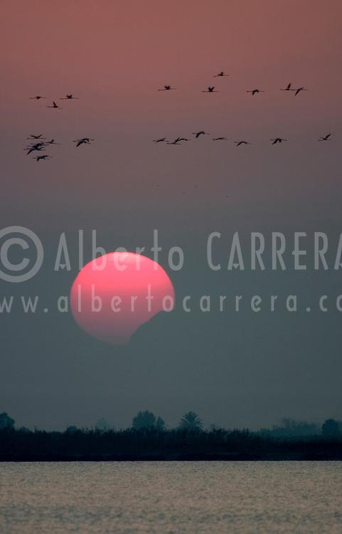 Alberto Carrera, Narural Colors Exhibition, Sunset, Región de Murcia, Spain, Europe