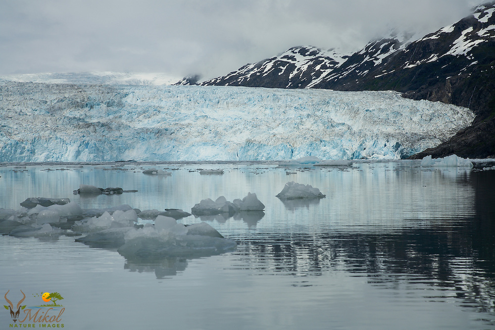 Chenega Glacier, Prince William Sound, Alaska