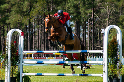 March 22, 2019 - Raeford, North Carolina, US - March 22, 2019 - Raeford, N.C., USA - WILL FAUDREE of the United States riding MICHEL 233 competes in the show jumping CCI-4S division at the sixth annual Cloud 11-Gavilan North LLC Carolina International CCI and Horse Trial, at Carolina Horse Park. The Carolina International CCI and Horse Trial is one of North AmericaÃ•s premier eventing competitions for national and international eventing combinations, hosting International competition at the CCI2*-S through CCI4*-S levels and National levels of Training through Advanced. (Credit Image: © Timothy L. Hale/ZUMA Wire)