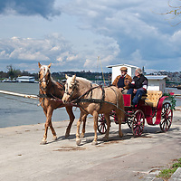 Horse-drawn carriage along the Sava River, Belgrade, Serbia.