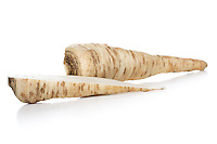 Parsley root on white background