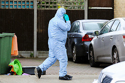 © Licensed to London News Pictures. 28/05/2019. London, UK. A forensic officer with the crime scene on Dyson Road, Forest Gate, East London where a man in his 30s died in the early hours of this morning following a flight on Warwick Road.<br />