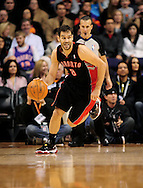 Jan. 24, 2012; Phoenix, AZ, USA; Toronto Raptors guard Jose Calderon (8) handles the ball against the Phoenix Suns during the first half at the US Airways Center. The Raptors defeated the Suns 99-96.  Mandatory Credit: Jennifer Stewart-US PRESSWIRE.