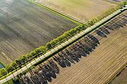 Nederland, Noord-Brabant, Woudrichem, 28-10-2014; diagonale rij bomen langs weg op het platteland, ten zuiden van Woudrichem. Lange schaduwen in de herfst.<br /> Diagonal row of trees along road in the countryside. Long shadows in autumn.<br /> luchtfoto (toeslag op standard tarieven); aerial photo (additional fee required); copyright foto/photo Siebe Swart