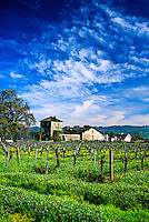 V. Sattui Winery, St. Helena, Napa Valley, California USA
