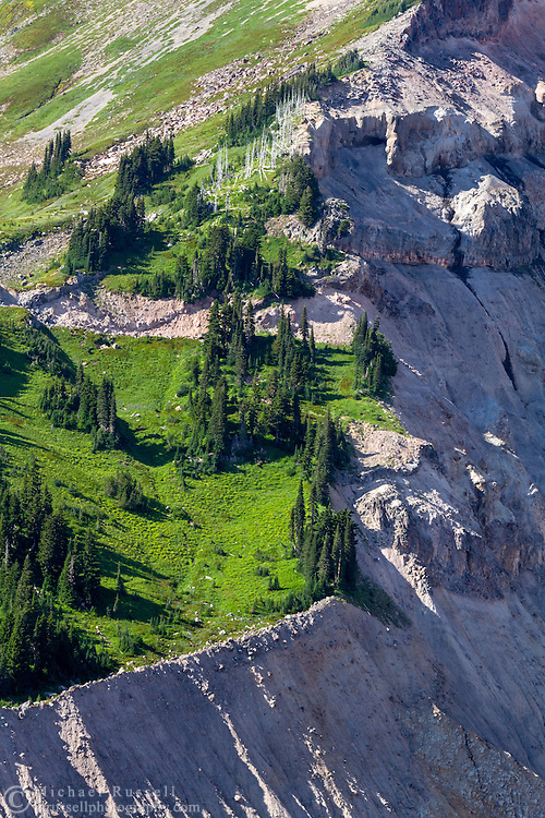 Forests and meadows on the edge of a glacial trough created by the Nisqually Glacier on Mount Rainier - Mount Rainier National Park, Washington State, USA