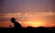 Cowboy silhouetted against the sunset