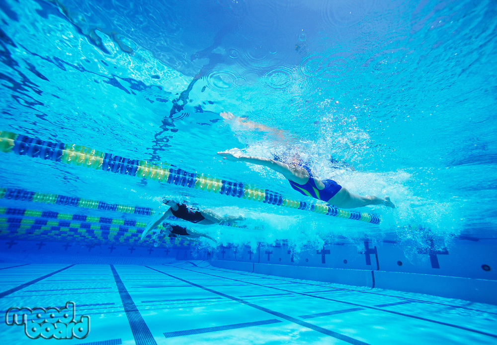 Group of female swimmers racing together in swimming pool