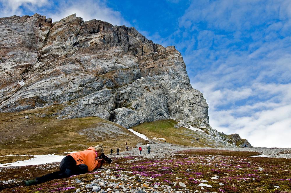 Photographing arciti flora at Hornsund, south-western Spitsbergen