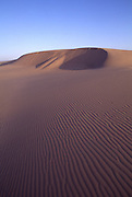 Sand Dunes, Honeyman State Park, Oregon<br />