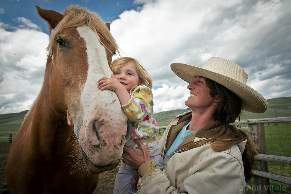 June 2012: Hilary Zaranek introduces her daughter Elle to draft horses in the Centennial Valley of Southwestern Montana.  The age of open range is gone and the era of long cattle drives over. Today, few ranches drive their cattle with horses, instead moving them by truck. Spurred by growing concern over beef's environmental impact and the long-term viability of their livelihood, a cohort of Montana ranchers is working to integrate ecological practices into livestock management.  The idea is that cows could be good for the landscape, particularly if they mimic the grazing behavior of wild herbivores. By bunching together for safety and intensely grazing an area for a brief period, before moving on, rangeland health will improve.