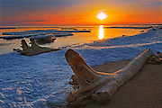 Ice and driftwood on Lake Manitoba at sunrise n late spring<br /> Delta Marsh<br /> Manitoba<br /> Canada