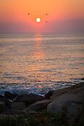 Sunrise, Gloucester, MA
