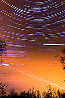 South View Star Trails. Late Autumn Night in New Jersey. Image taken with a Nikon D3 and 14-24 f/2.8 lens (ISO 200, 15 mm, f/5.6, 60 sec). Composite of 100 images combined using the Startrails program.