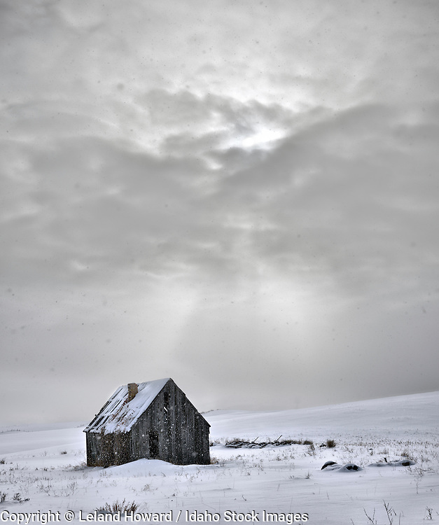 Idaho, east, old cabin in snow storm in the Snake River Mountains area