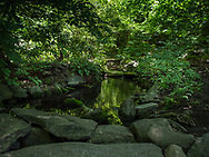 An idillic stream in the Ramble of Central Park in the heart of a hectic city.