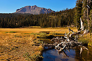King's Meadow in the fall with Mt Lassen in the background photographed from King's Creek