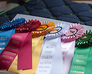 May 2014 Belle Wood Stables Horse Show