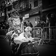New York . Chinese New Year parade in Chinatown. for the year of the dragon / Parade du nouvel an chinois, l annee du Dragon, dans les rues de chinatown