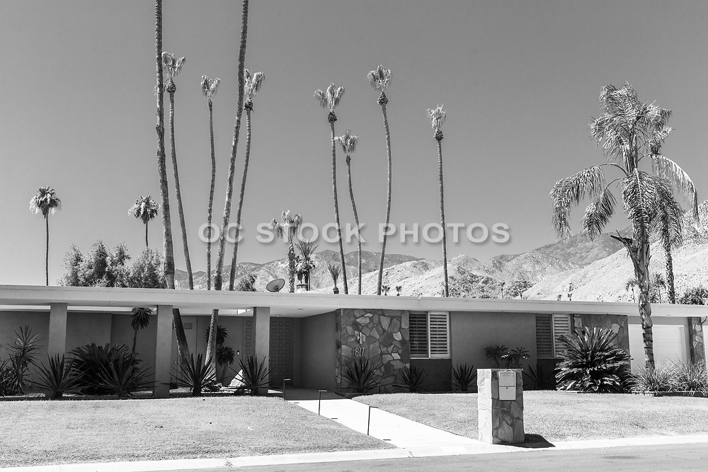 Palm Springs Retro Style Home