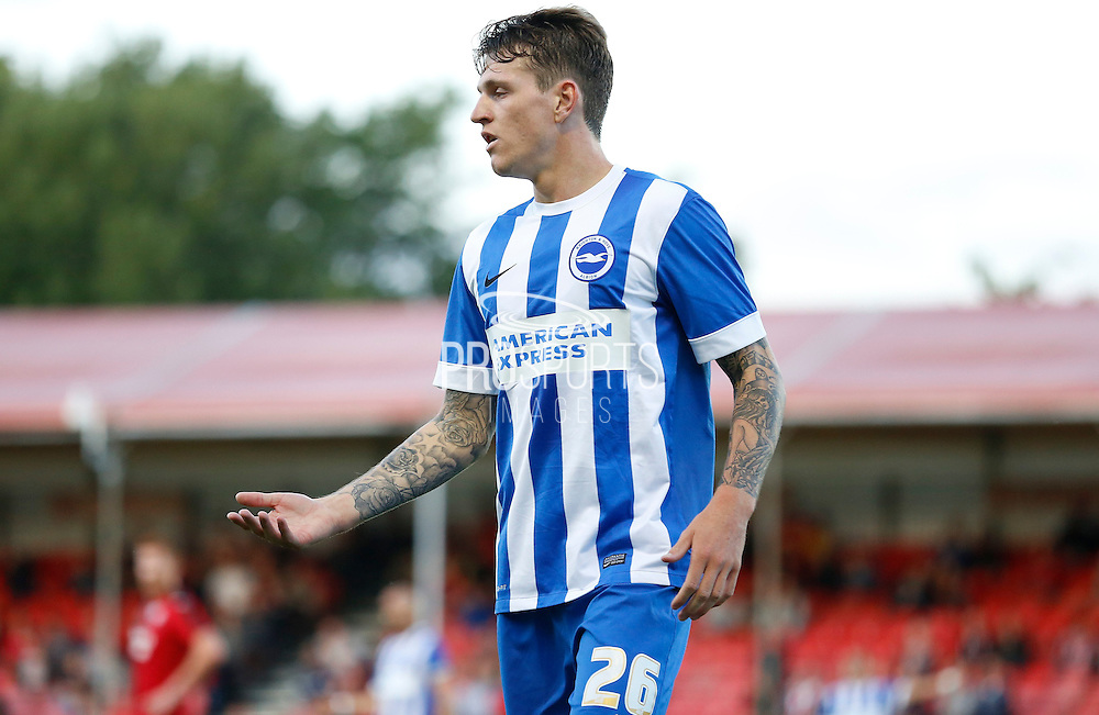 Glen Rea holding the line during the Pre-Season Friendly match between Crawley Town and Brighton and Hove Albion at the Checkatrade.com Stadium, Crawley, England on 22 July 2015. Photo by Michael Hulf.