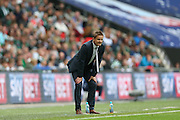 AFC Wimbledon manager Neal Ardley crouching down during the Sky Bet League 2 play off final match between AFC Wimbledon and Plymouth Argyle at Wembley Stadium, London, England on 30 May 2016.
