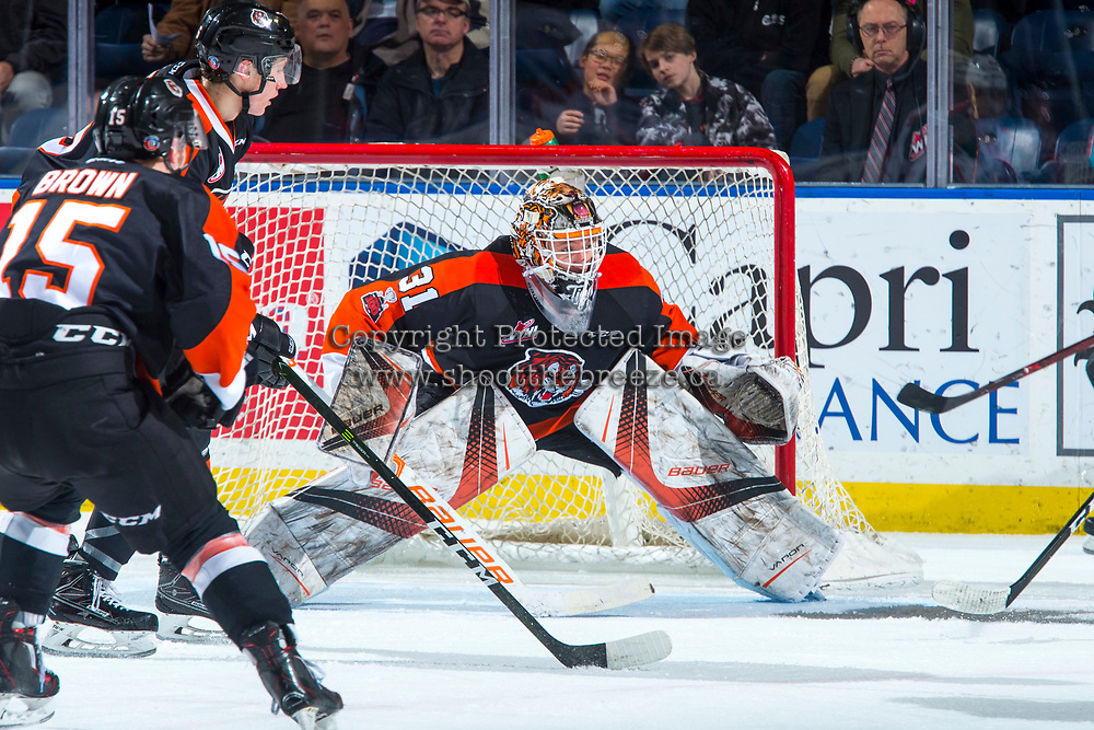 KELOWNA, CANADA - JANUARY 30: Jordan Hollett #31 of the Medicine Hat Tigers defends the net against the Kelowna Rockets on January 30, 2017 at Prospera Place in Kelowna, British Columbia, Canada.  (Photo by Marissa Baecker/Shoot the Breeze)  *** Local Caption ***
