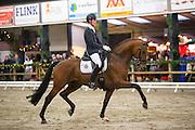 Diederik van Silfhout - Expression<br /> KNHS/KWPN Hengstencompetitie 2014/2015<br /> © DigiShots