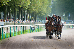 Christoph Sandmann, (GER), Amico 34, Asztor, Scicco, Variant, Wierd - Driving Marathon - Alltech FEI World Equestrian Games™ 2014 - Normandy, France.<br /> © Hippo Foto Team - Becky Stroud<br /> 06/09/2014
