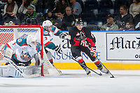 KELOWNA, CANADA - DECEMBER 30: Chase Witala #8 of Prince George Cougars skates with the puck behind the net of Jackson Whistle #1 as Riley Stadel #3 of Kelowna Rockets stick checks from behind on December 30, 2014 at Prospera Place in Kelowna, British Columbia, Canada.  (Photo by Marissa Baecker/Shoot the Breeze)  *** Local Caption *** Jackson Whistle; Riley Stadel; Chase Witala;