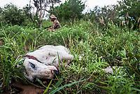 Ranger Training and counter-poaching patrols, Somkhanda Private Game Reserve, KwaZulu Natal, South Africa