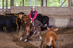 May 20, 2017 - Minshall Farm Cutting 3, held at Minshall Farms, Hillsburgh Ontario. The event was put on by the Ontario Cutting Horse Association. Riding in the 25,000 Novice Horse Non-Pro Class is Karen Hudon on Little Zack Lena owned by the rider.