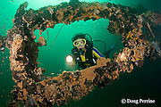 diver explores the wreck of the El Capitan / USS Majaba,<br /> an American freighter of 90 m length, sunk in 1946 in Subic Bay, Philippines, lying on its side at a depth of 5-21 m; MR 379