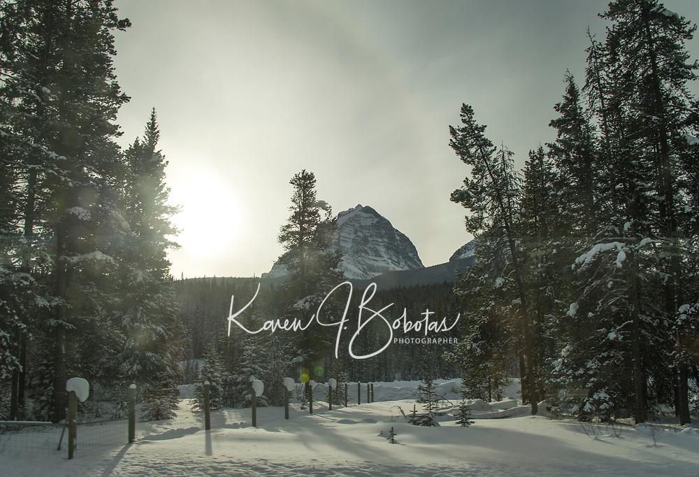 Banff ski trip. Bus ride back to town at dusk.   ©2019 Karen Bobotas Photographer