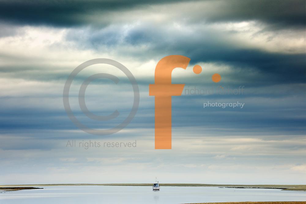 Job110101_NewZealand_DSC2452_NX.tif.Low tide, looking toward Oyster Island..Near Nelson, South Island, New Zealand..