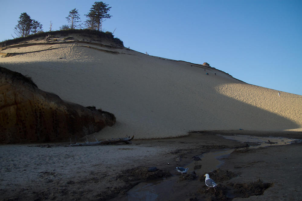 Kiwanda Point sand dune. The Oregon Coast, a classic, beautiful road trip. Heading West from Portland to Tillamook, with a detour to the fishing village of Garibaldi, through Cape Lookout State Park and on to our final destination of Pacific City.