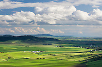 Farms set amidst the rolling hills of green wheat fields in the Palouse region of the Inland Empire of Washington