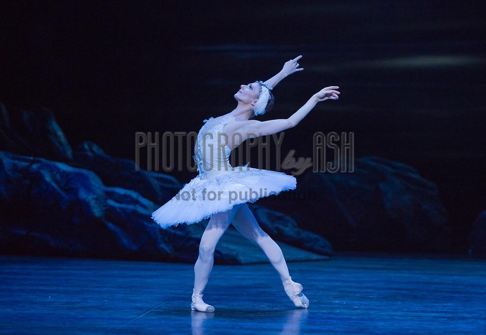 Alina Cojocaru as Odile during English National Ballet's dress rehearsal of Swan Lake at the Coliseum Theatre, London on January 06, 2015. Photo: Arnaud Stephenson
