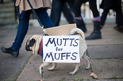 © Licensed to London News Pictures. 10/12/2011. London, UK.  A dog wearing a banner reading 'MUTTS for MUFFS' during Muff March down Harley Street, famous for being the centre of cosmetic surgery clinics, in London today (10/12/2011).  Muff March is a protest against the the pornification of female private parts. Muff March believes women are being pressurised by porn culture to get a 'designer vagina'. Photo credit: Ben Cawthra/LNP