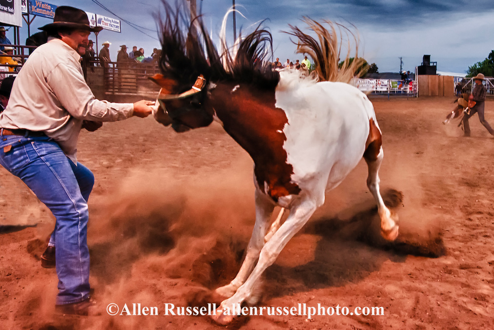 Wild Horse Race, Miles City Bucking Horse Sale, Montana, mugger, Robert Worazek
